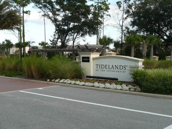 Tidelands on the Intracoastal Palm Coast