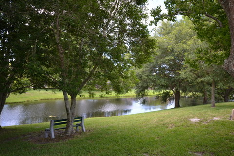 Search For Homes For Sale In Breakaway Trails Ormond Beach